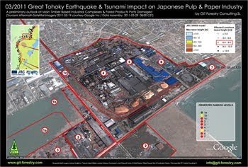 2011 Japan Earthquake & Tsunami Impact on Japanese Pulp and Paper Industry and Forestry Product Ports, Case Study NPG Nippon Paper Group Ishinomaki Pulp and Paper Mill Tsunami Damage 3D Satellite Photography / Impacto del Terremoto y Tsunami de Japon 2011 en puertos de importacion y exportacion de productos forestales e industria de pulpa celulosica y de papel del Japon y en la importacion de astillas de madera de eucalipto a Japon: Estudio de Caso 02: Fabrica de Celulosa y Papel de NPG Nippon Paper Group Ishinomaki, Fotografia Satelital en 3D / パルプ紙2011年の日本地震の影響の予備的な地図セルロース日本 / เยื่อแผ่นดินไหวญี่ปุ่นและแผนที่อุตสาหกรรมกระดาษ / Япония 2011 целлюлозно землетрясения и карта бумажной промышленности / اليابان اللب والورق زلزال 2011 خريطة صناعة / Impacto do Terramoto e Tsunami de Japão  2011 nos portos de importaçao e exportaçao de produtos florestais e na industria do papel e celulose do Japão e na importaçao de chips de madeira de eucalipto do Japão: Estudo de Caso 02: Fabrica de Celulose e Papel da NPG Nippon Paper Group em Ishinomaki, Fotografia Aerea em 3D / Gustavo Iglesias Trabado, GIT Forestry Consulting SL, Consultoria y Servicios de Ingenieria Agroforestal, Lugo, Galicia, España, Spain / Eucalyptologics, Information resources on sustainable eucalypt cultivation worldwide / Recursos de informacion sobre el cultivo sostenible del eucalipto en el mundo