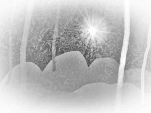 Carulmare Vinternatt 2010