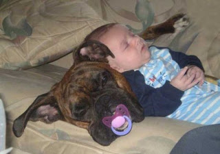 Kids And Pets; Cutest love