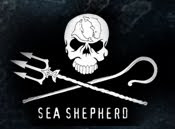 Sea Sheperd