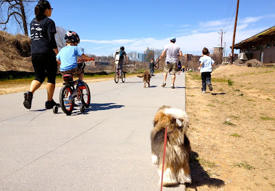 Rocco Havanese on Atlanta Beltline Trail