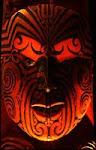 Maori Insights