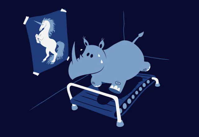animals, funny pictures, rhino, unicorn, cartoon