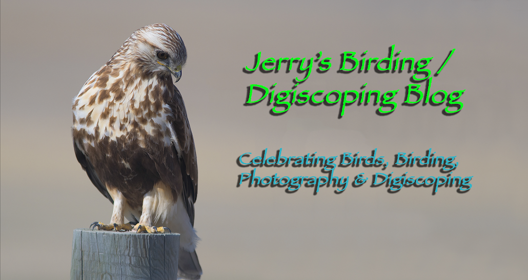 Jerry's Birding / Digiscoping Blog