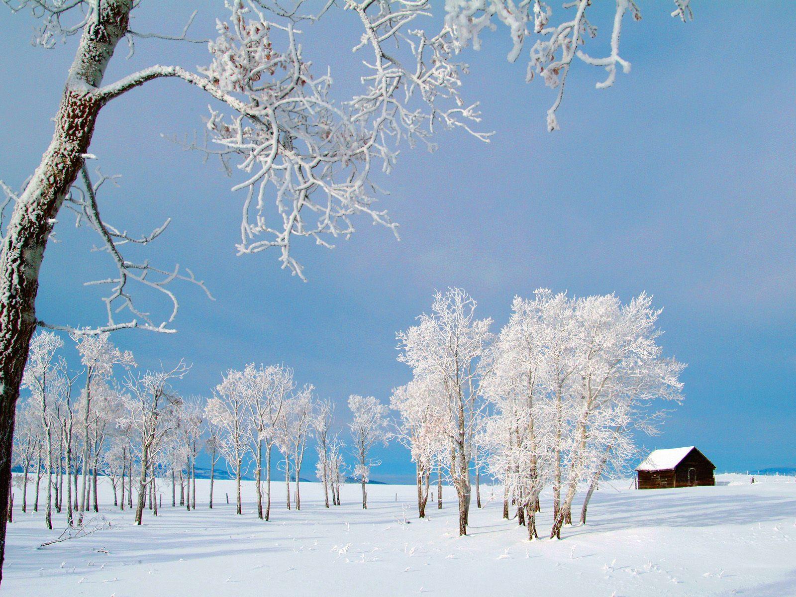 http://1.bp.blogspot.com/-9TUcB13Z8zY/TtUpA7KzeGI/AAAAAAAAKbI/JorE08frcao/s1600/winter-wallpaper-024.jpg