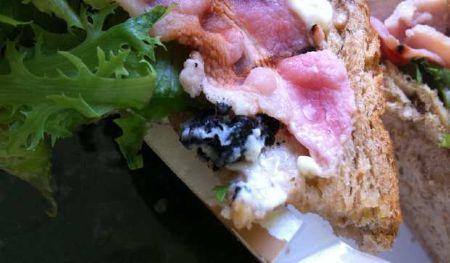 Sandwich Tikus