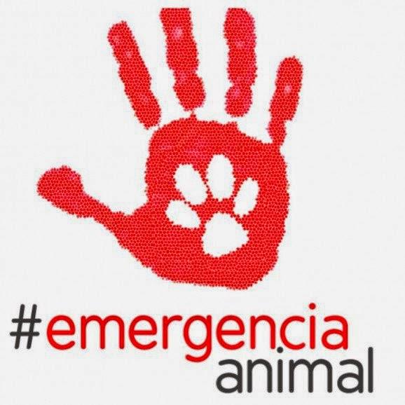 Emergencia Animal
