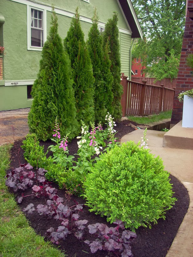 Narrow Backyard Trees : Gardening Naturally with Claudia Smaller Yards Need Smaller Plants