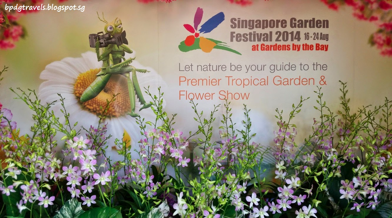 we made our way to the meadow gardens by the bay on the first day of the festival and it was not surprising to see a crowd despite the hot afternoon sun
