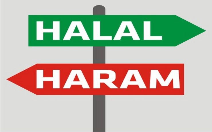 Daftar Hewan Yang Halal Dan Haram Untuk Dimakan Menurut Islam