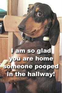 Glad you're home.....