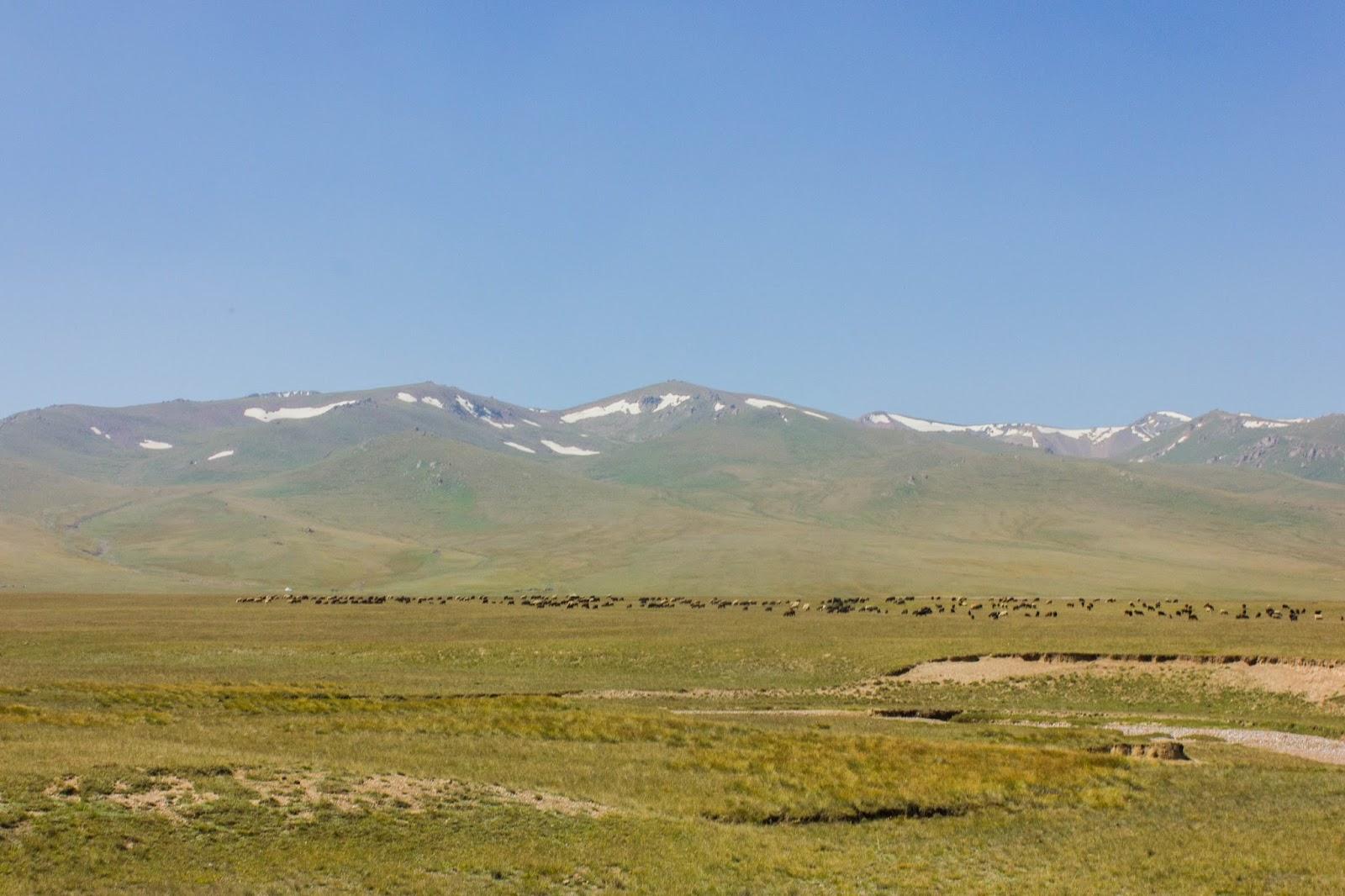 Кыргызские горы, Сон-куль, горы