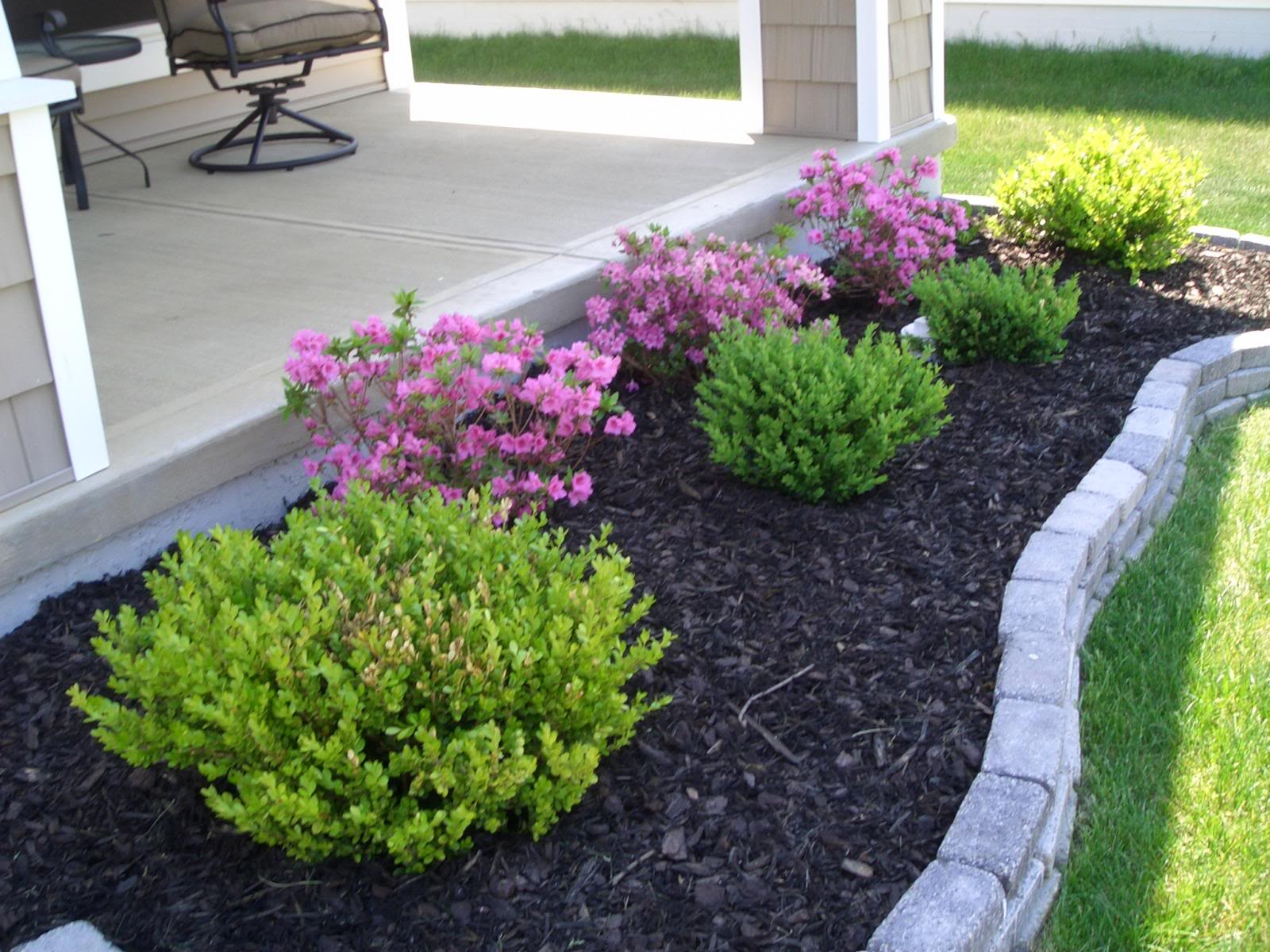 Landscaping landscape plants ideas for Simple flower garden