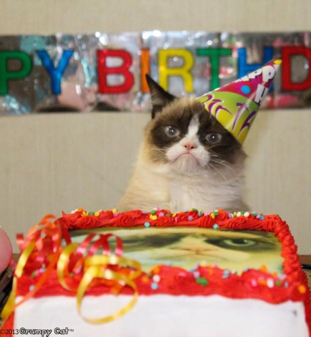 Grumpy Cat Birthday Youtube: White Wolf : Happy First Birthday, Grumpy Cat