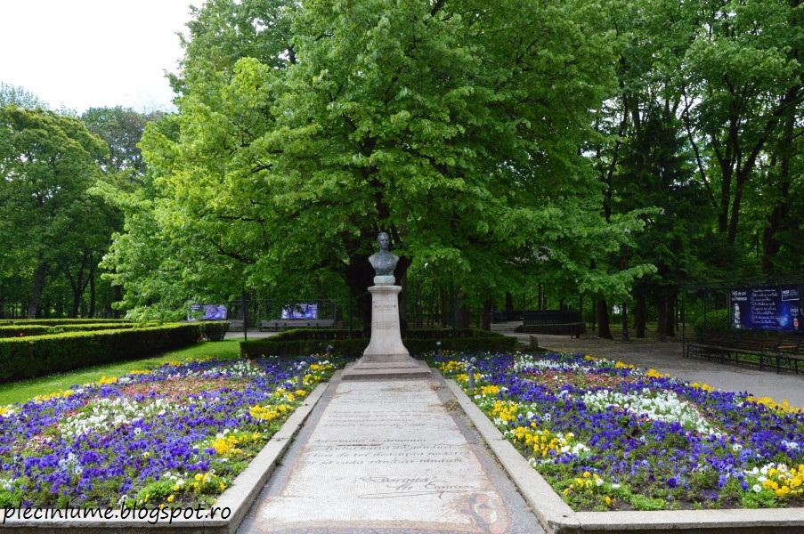Teiul lui Eminescu din parcul Copou, Iasi
