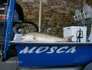 Ceaser and Lucy's 40 inch redfish