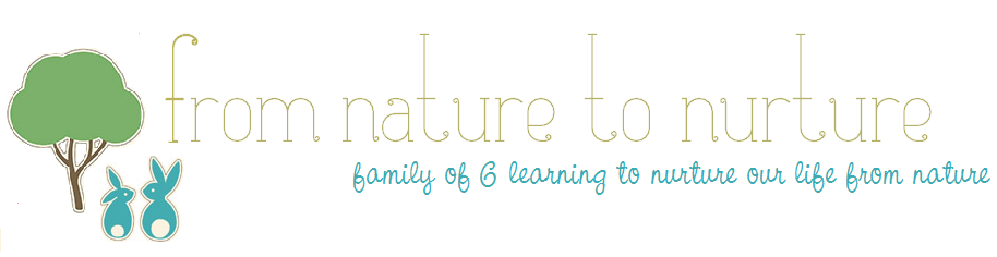 From Nature to Nurture