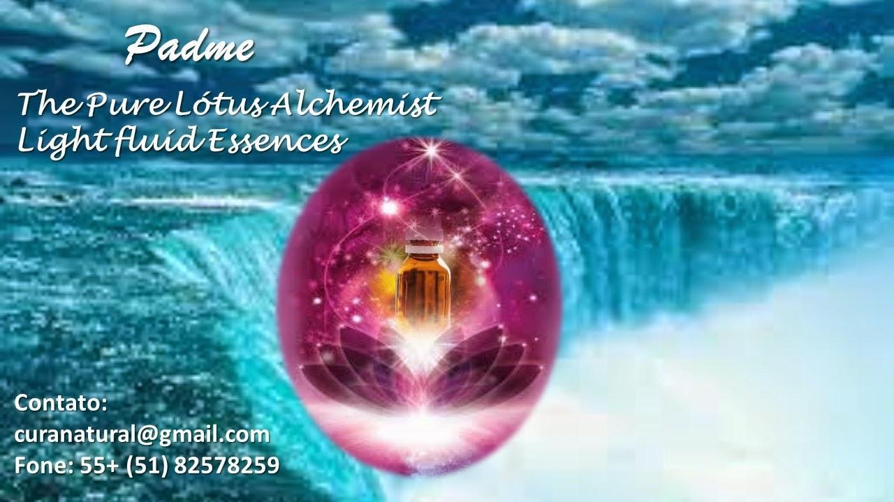 Lotus Alchemist