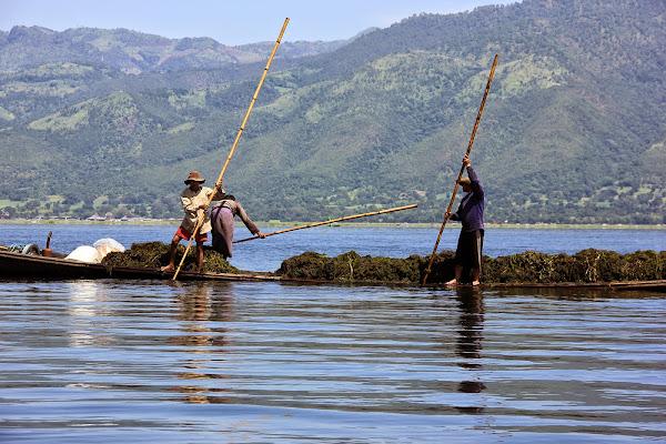 Pescadores (Lago Inle, Myanmar)
