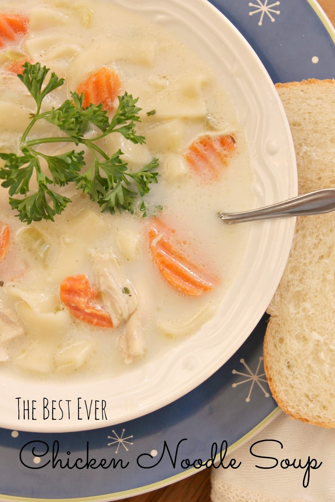 The Best Ever Chicken Noodle Soup...