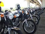 ##Bike For Sale##
