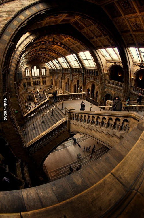 The Natural History Museum (Londres)