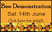 Live Bee Demonstration
