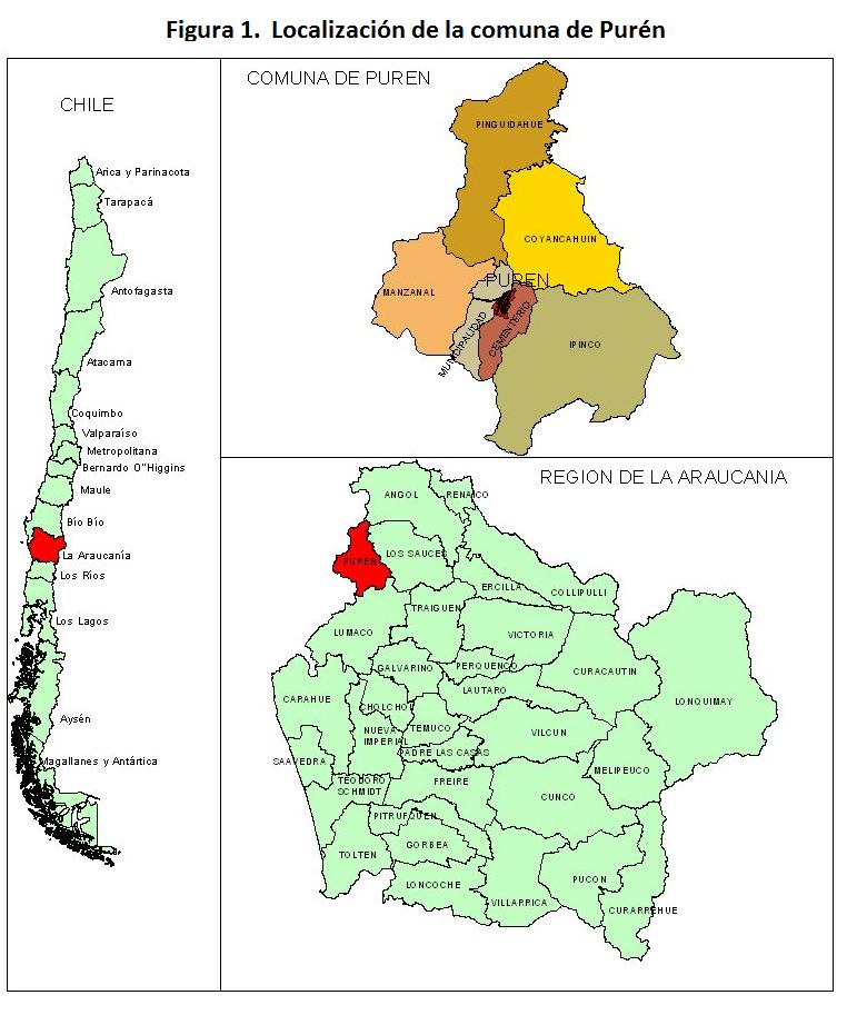 2. LOCALIZACIÓN Y DESCRIPCIÓN DE LA COMUNA DE PUREN ...