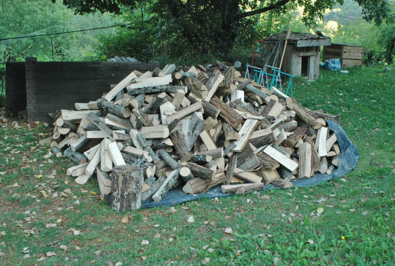 Small Firewood Pile - Viewing Gallery