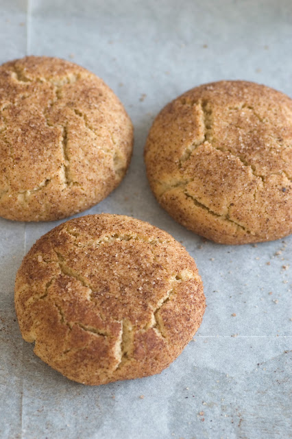 עוגיות סניקרדודל