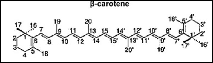 Gambar1. Struktur β-karoten ( Andreeva 2011)