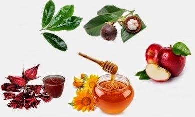 Pilihan Pengobatan dengan Obat Herbal