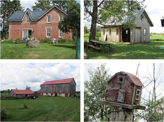 Summer Vacation at The Farm1