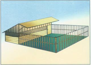ayam kampung: Kandang untuk Pembesaran Ayam Kampung