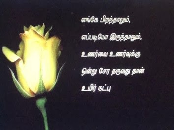 friendship quotes in tamil english quote addicts