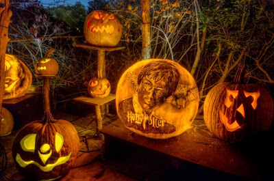 a group of carved jack o lanterns with faces and one with the face of harry potter at the jack o lantern spectacular