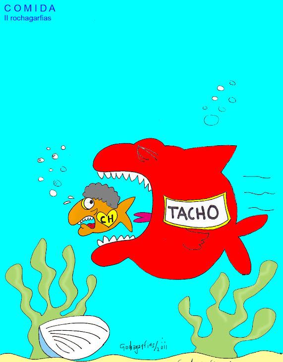 El regreso de TACHO en Orizaba