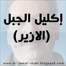 جمال الصقلي - إكليل الجبل (الازير)
