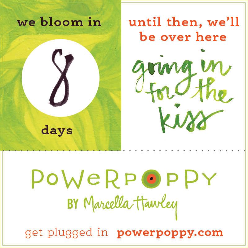 http://powerpoppy.com/'