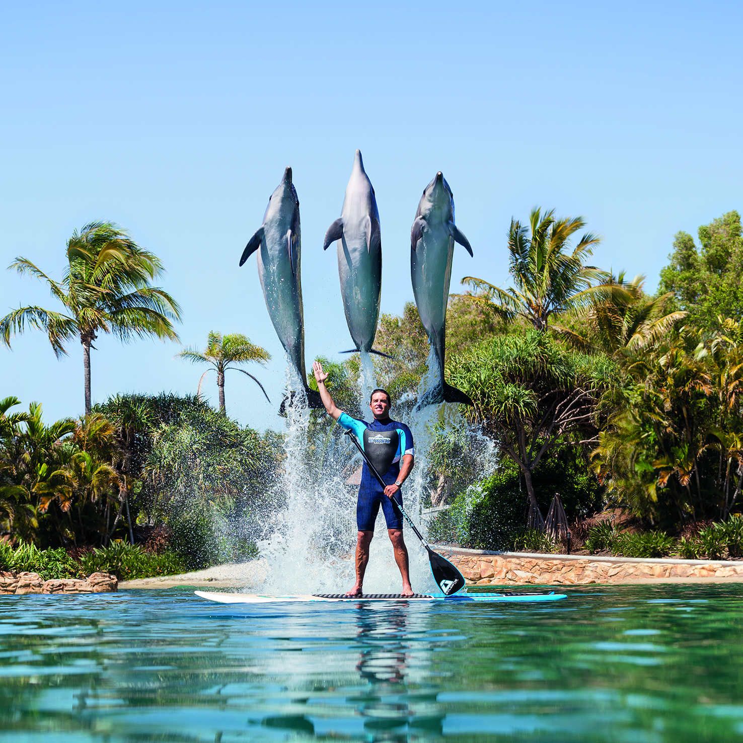 Dolphin Paddleboard