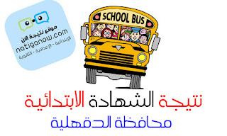 نتيجة الشهادة الابتدائية برقم الجلوس - محافظة الدقهلية