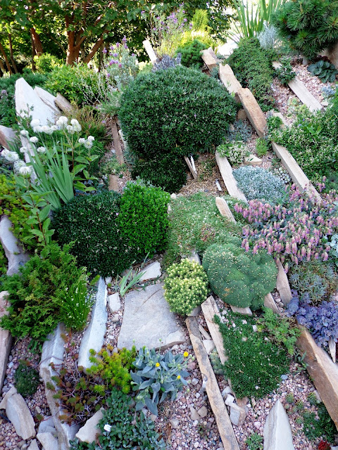 Danger garden an obsession starts slowly and builds for Jardin eden prairie