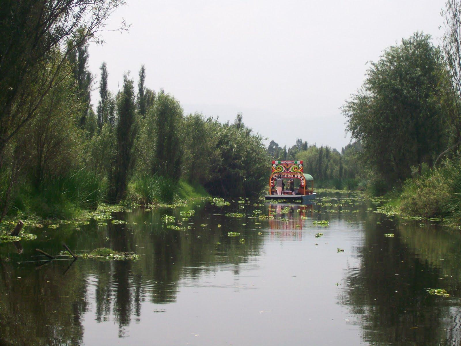 chinampas xochimilco - photo #10
