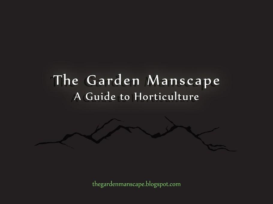 The Garden Manscape