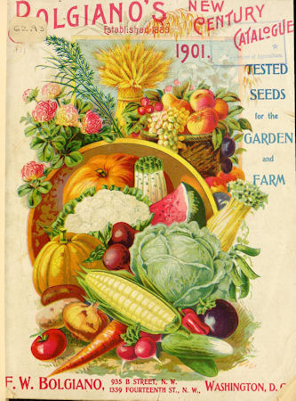 The Herb Gardener 2016 Seed Catalog List Free and PDF