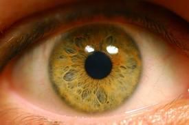 Program untuk melindungi mata dari radiasi komputer