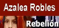 Artículos A Robles en rebelion.org