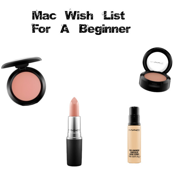 Beginner's mac wish list