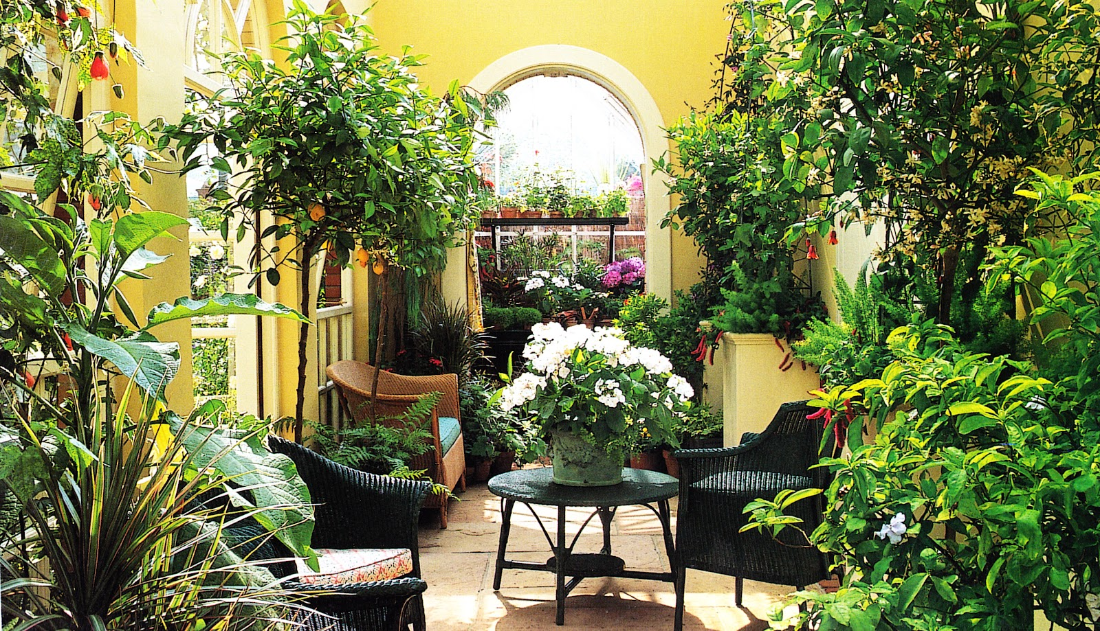 Сад желаний 2000 2 фотография