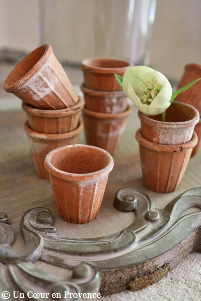 Small clay pots